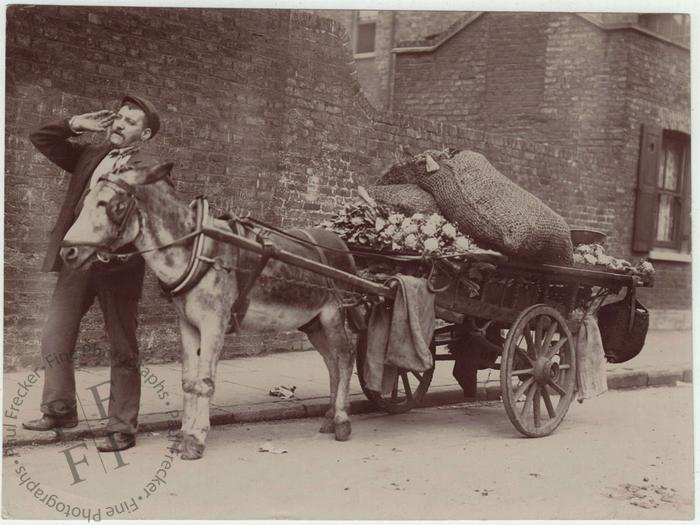Street vendor with donkey cart